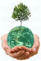 محیط زیستی1